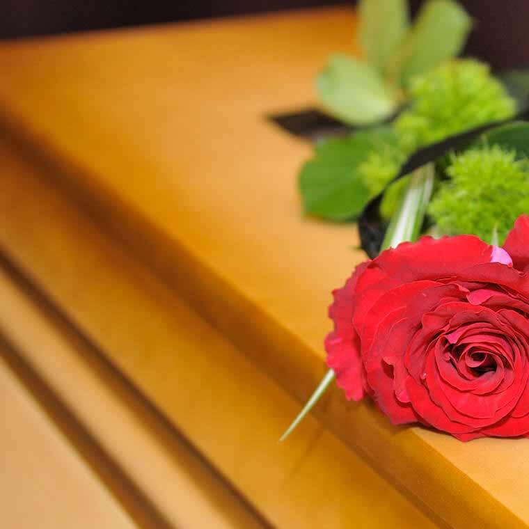 czerwona róża na trumnie